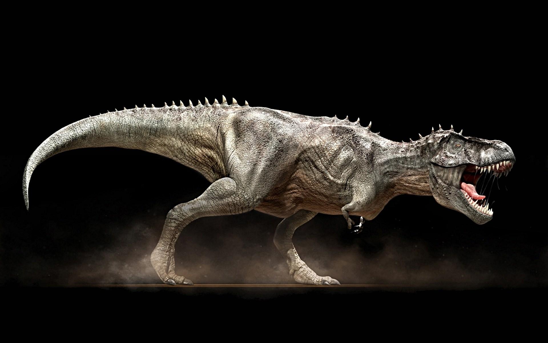 T l charger fonds d 39 cran tyrannosaurus rex gratuitement - Dessin dinosaure t rex ...