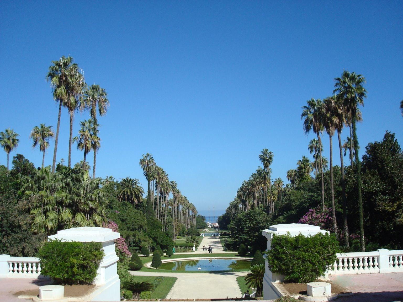 Fond D Écran Algerie télécharger fonds d'écran alger - le jardin d'essai gratuitement