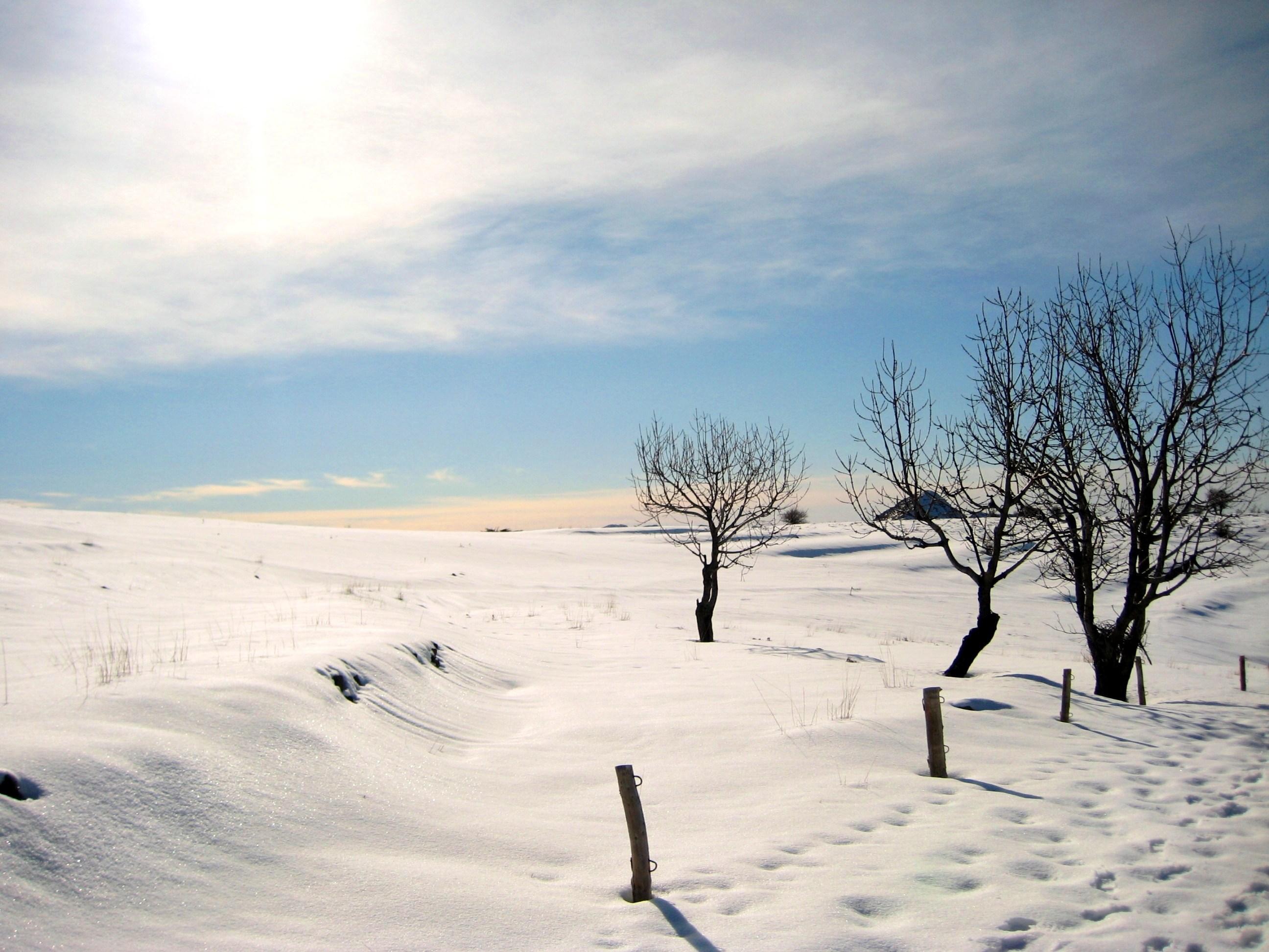 R solu jour de neige page 2 le forum sfr 820190 - Photos de neige gratuites ...