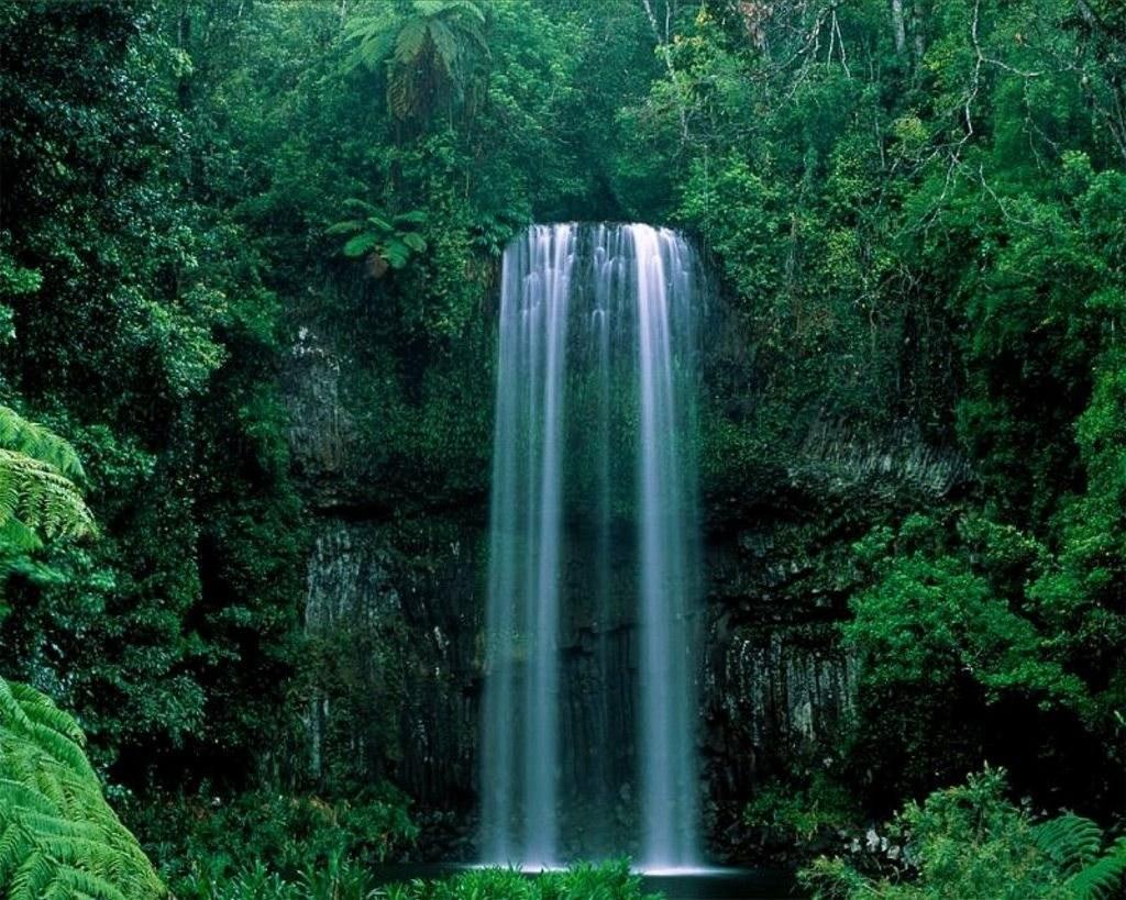 Image cascade - nature