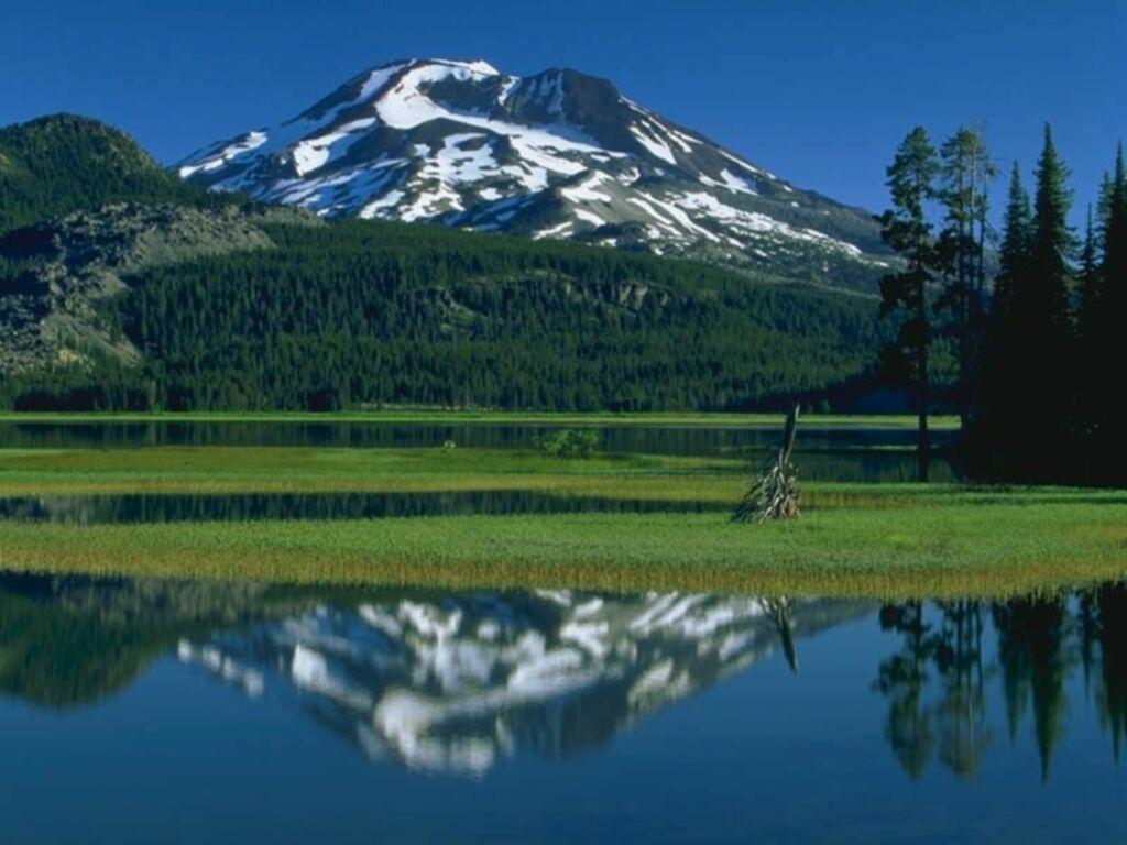 pin paysages montagne fond - photo #44