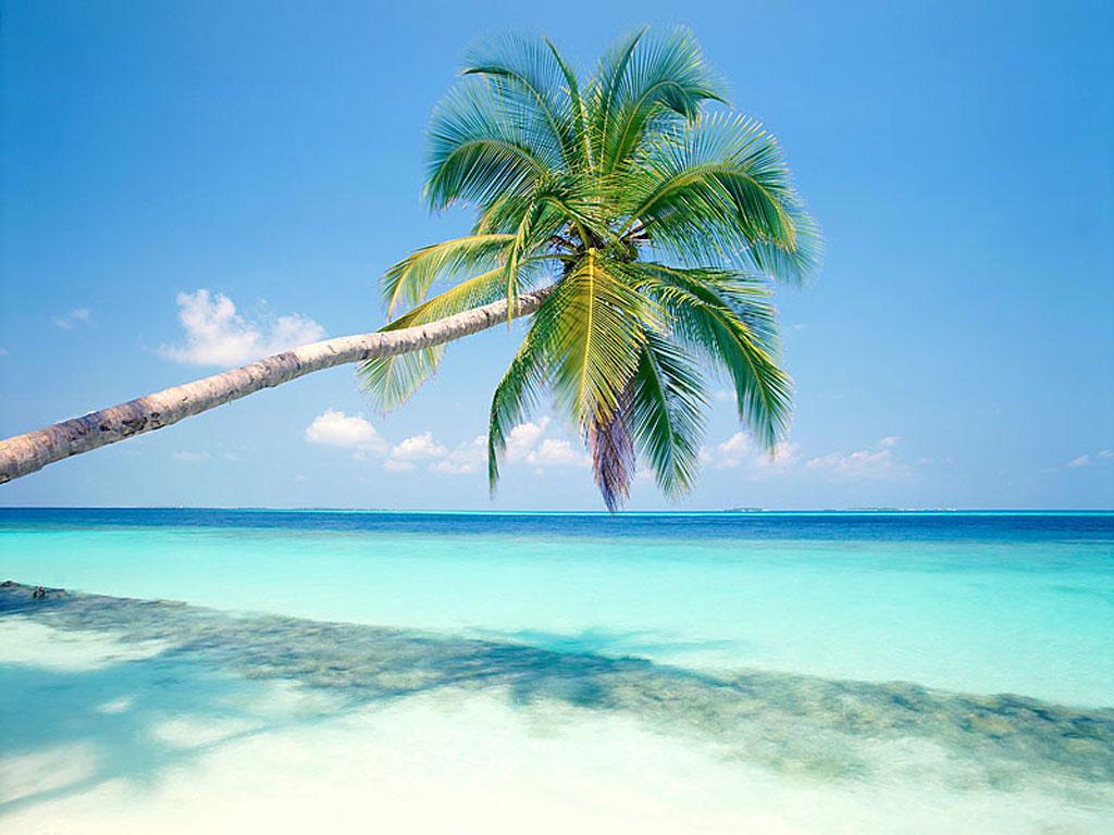 T l charger fonds d 39 cran vue paradisiaque gratuitement - Image de plage paradisiaque ...