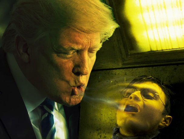 Trump harry potter