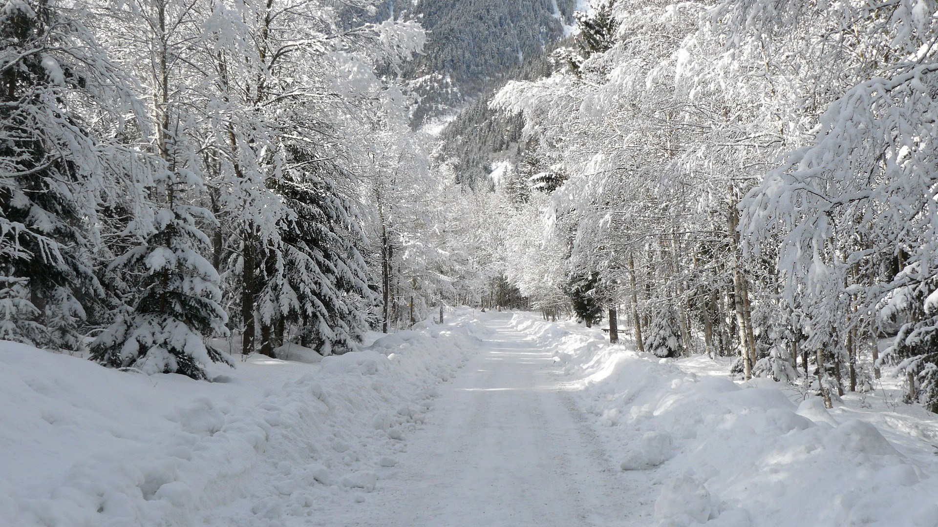 Hiver jan 06 2013 08 14 00 picture gallery for Paysage