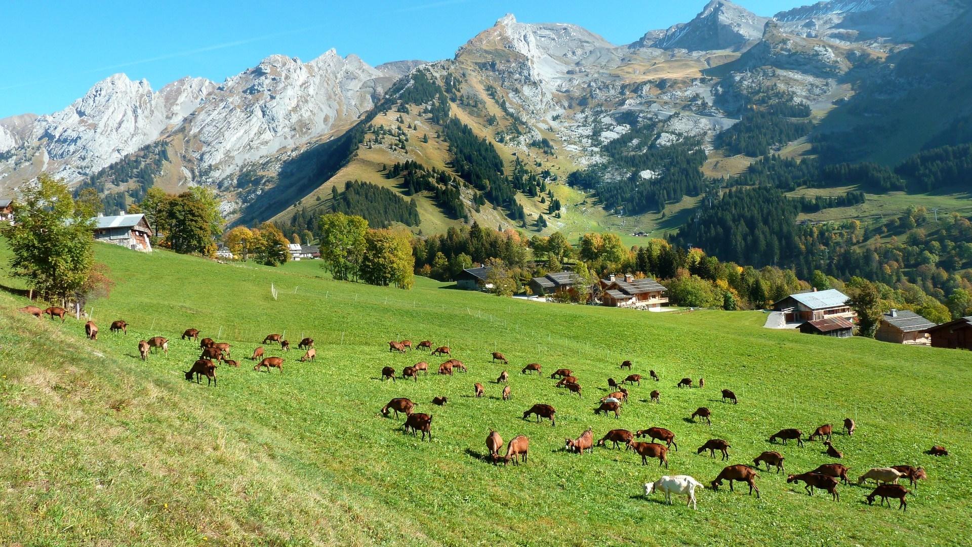 Savoie paysage voyages cartes - Office du tourisme grand bornand chinaillon ...