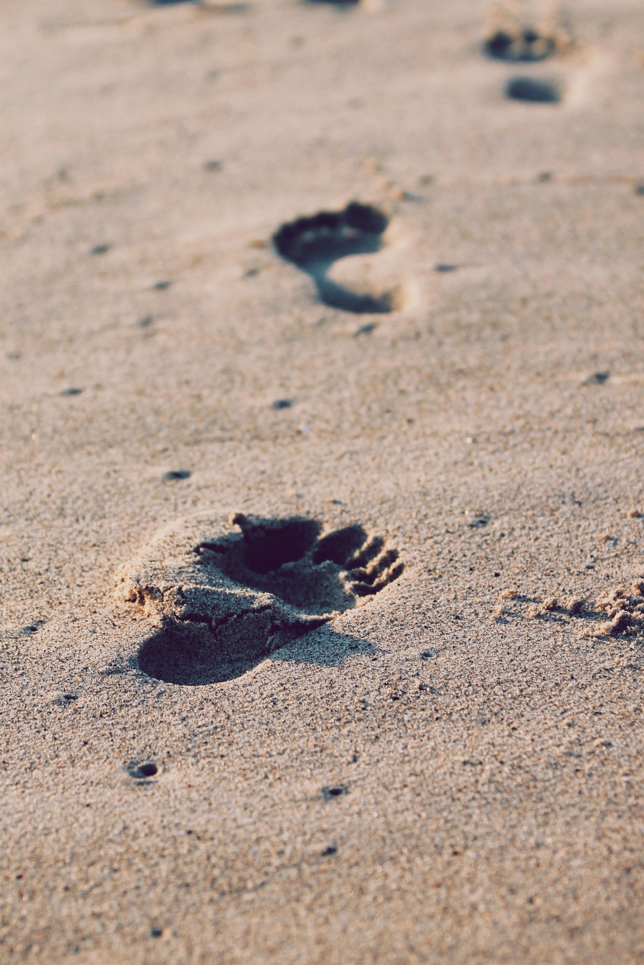 Traces de pied dans le sable