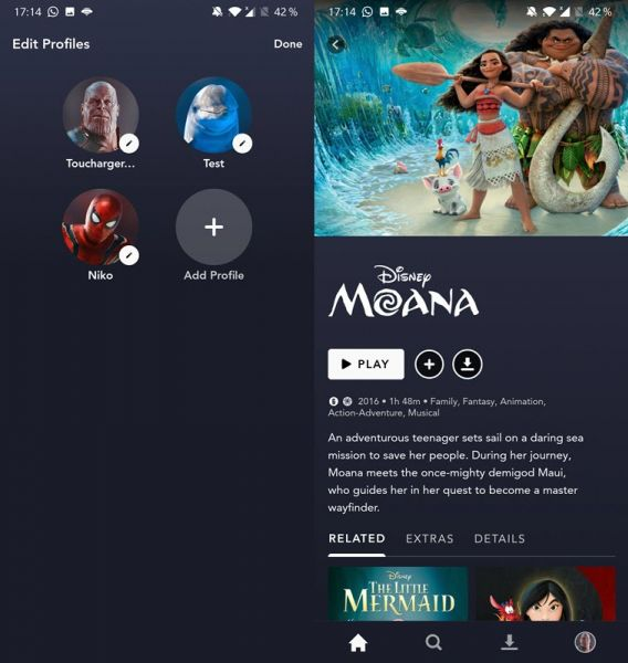 Toucharger DisneyPlus account